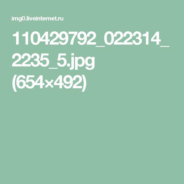 110429792_022314_2235_5.jpg (654×492)