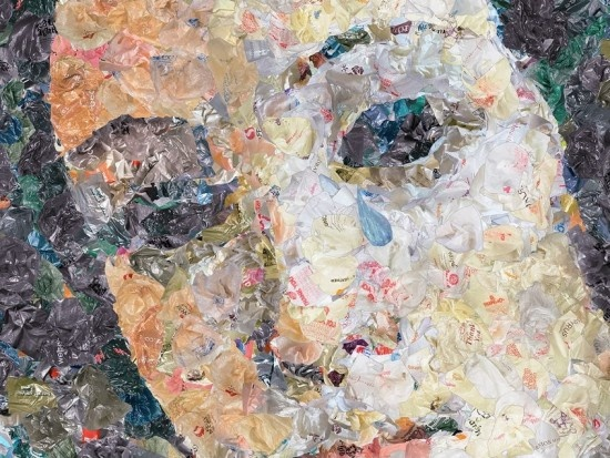 plastic bags #art Venus by Chris Jordan