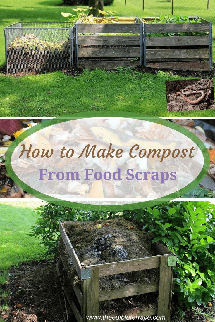 Find out here how beginners can learn to compost. Whether you want to compost indoors, in your apartment, or outside next to your garden, composting is achievable for all. Learn easy DIY methods here or where to simply buy what you need! #Composting #Gardening