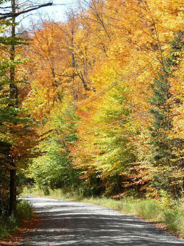 Country Road, Adirondack Mountains, NY  - http://earth66.com/autumn/country-road-adirondack-mountains/