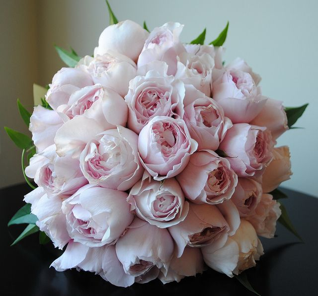 David Austin Rose Bouquet by jessieloulove, via Flickr