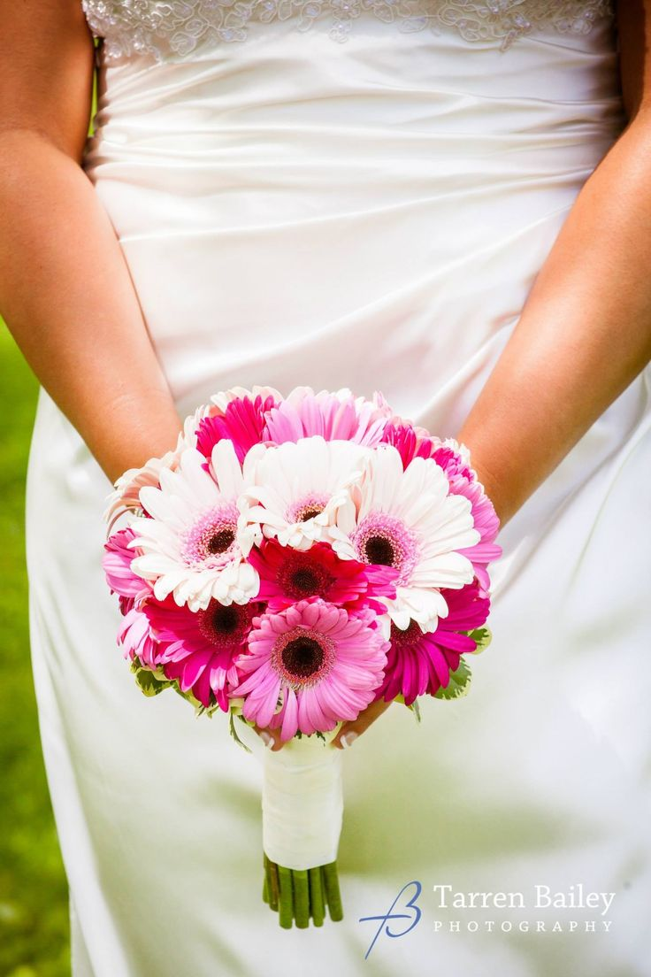 A clean and simple handtied wedding bouquet of only assorted shades of pink gerbera daisies. #aromabotanical