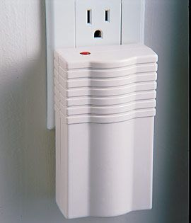 55 Best Pest Control Images On Pinterest Bulbs Electric And