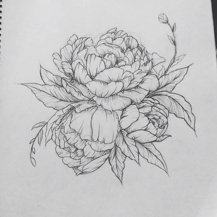 Classic Peony Flower Tattoo Design. I like the bud sticking out
