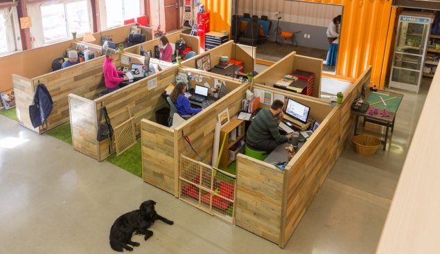 Dog beds? Check. Kitchen stocked with puppy treats? Check. A special pet shower for those muddy paws? But, of course. Anything your pooch could want, Massachusetts startup Kurgo has got it covered.