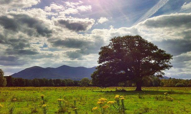 NerdFitness: A Beginner's Guide to Hiking