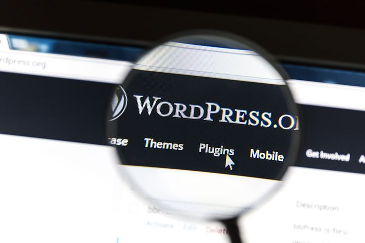 Top tools for Wordpress development and site maintenance.