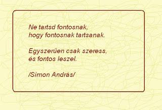 füveskönyv: Simon András