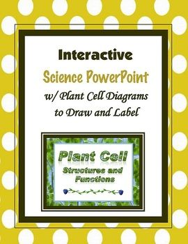This is an interactive PowerPoint on the structure and functions of plant cells. Included are a Plant Cell Structures and Functions PowerPoint, a plant cell diagram blackline, a plant cell vocabulary sheet, and an animal and plant cell compare and contrast graphic organizer.About this Lesson:I created this PowerPoint lesson and I designed a Cell Diagram Blackline to go with the PowerPoint.