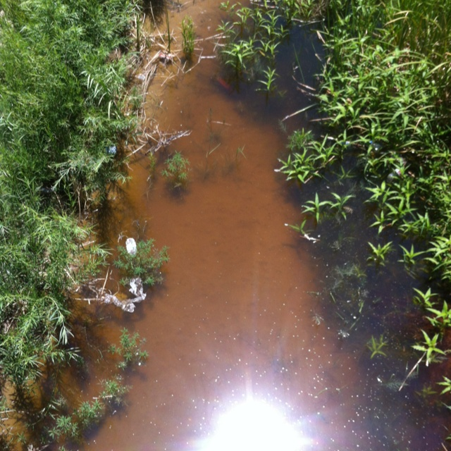 #Río Bravo...agonizante!!!