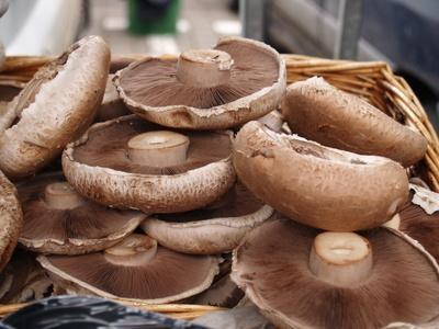 Portobello Mushroom Nutritional Value