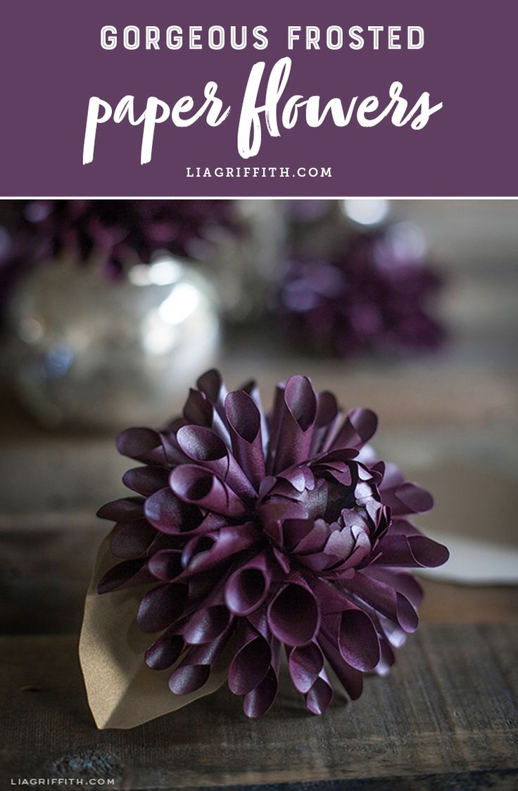 Discover gorgeous frosted paper flower tutorials and patterns! www.LiaGriffith.com #paperflowers #paperflower #paperflowertutorials #paperflowerpatterns #diyinspiration #papercraft #howto