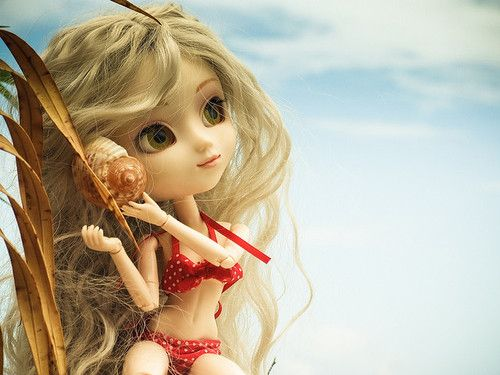 pullip on the beach