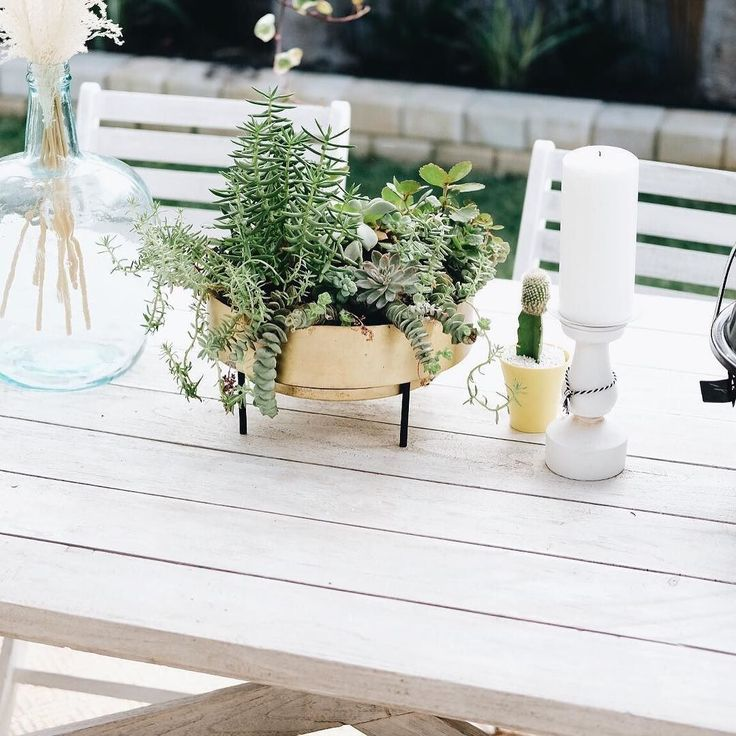 cheers to beautiful sunny Sunday  . Hope the sun will shines all day today . Featured our Jadore succulent brass bowl Planter.  @adsumarno  view on Instagram http://ift.tt/2yVJND4
