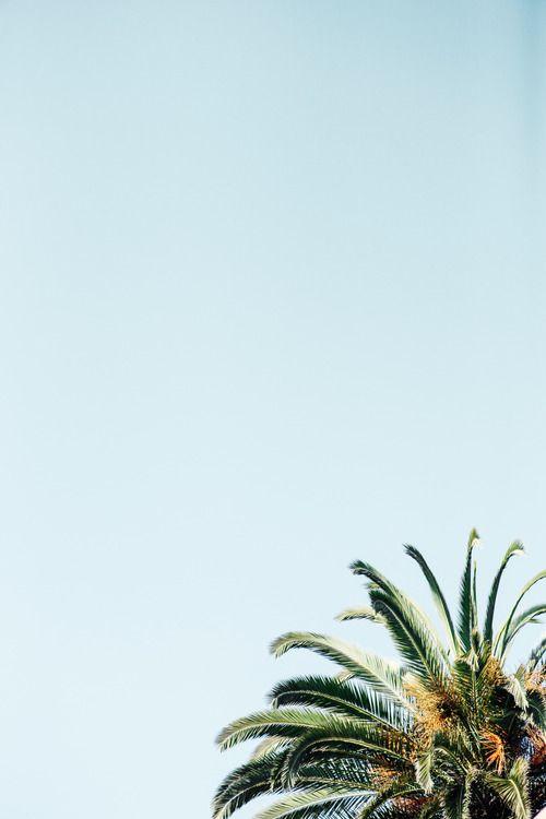 Santa Barbara/ Photo byAnais and Dax