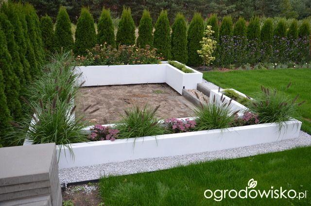 """Jak """"ożywić"""" mój szmaragdowy ogród - strona 645 - Forum ogrodnicze - Ogrodowisko"""