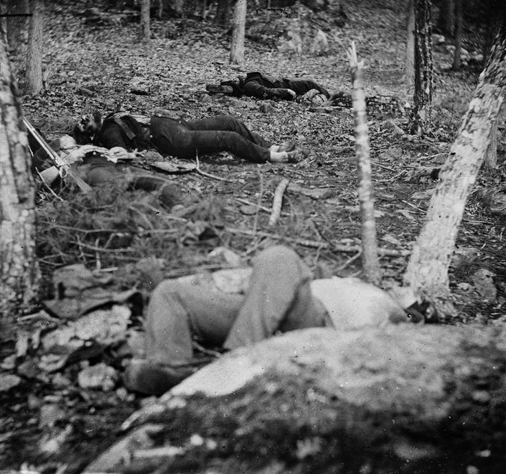 Four dead soldiers in the woods near Little Round Top. Photograph from the main eastern theater of the war, Gettysburg, June-July, 1863. Creator: Gardner, Alexander, 1821-1882, photographer Date Created/Published: 1863 July.