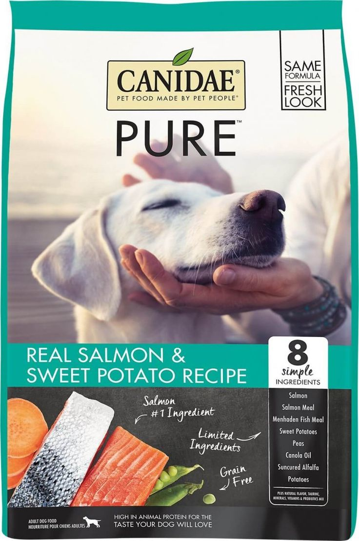 Top 10 Best Dog Foods for Allergies 2020 Dog Food