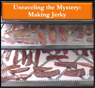 Making jerky at home is looked at with an almost awe-like reverence by those who don't know how. It is an old method of food preservation and EASY to learn!
