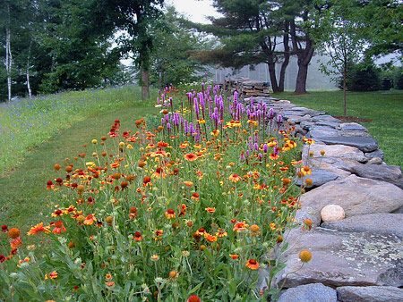 wildflower rock garden by path to bamboo forrest