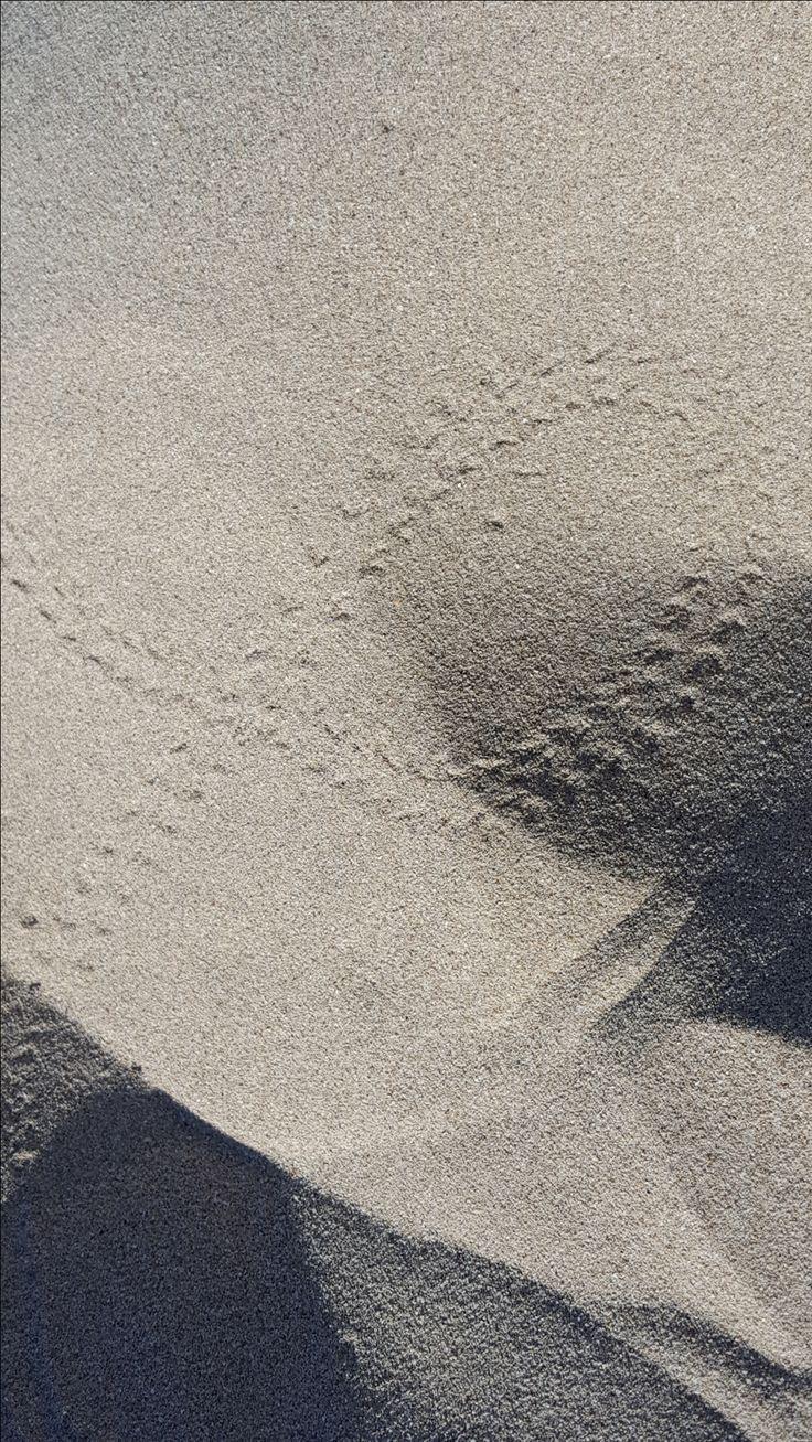 砂の中に足跡 - Mediterranea Pitiusa - Formentera