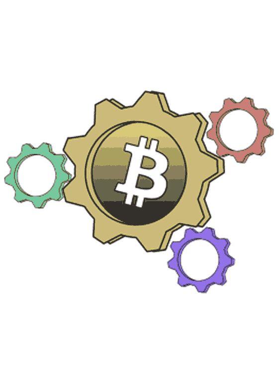 Bitcoin Economics Course