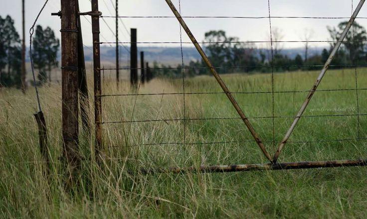 Farm fence  Farm Photography Mpumalanga South Africa