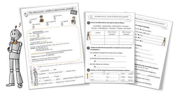 G12 Grammaire CE2 : les déterminants et articles (Bout de ...