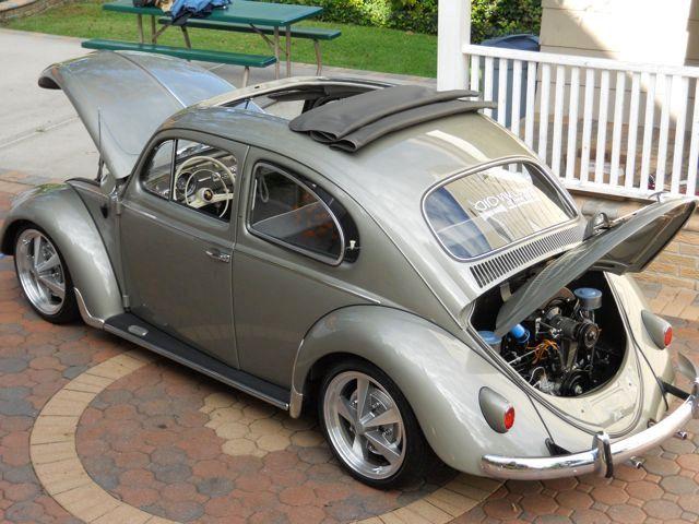 Cool bug