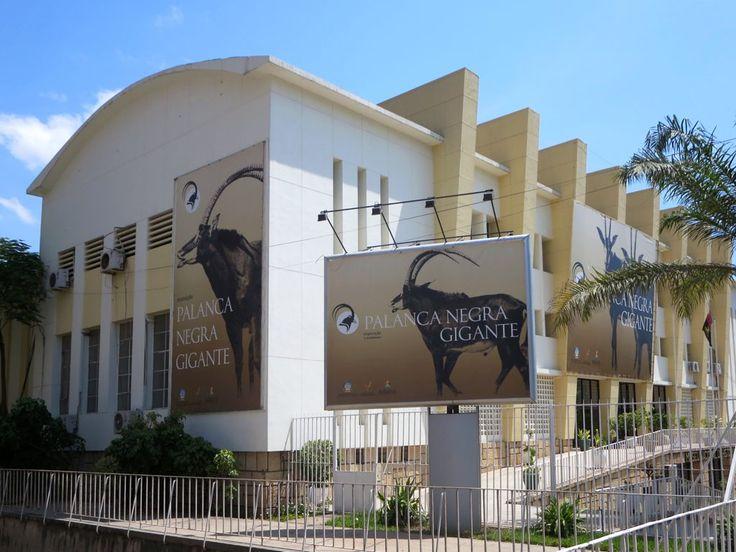 The Museu de História Natural in Luanda showcases Angola's flora and fauna.