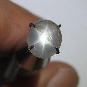 Natural Grey Star Sapphire 1.46 carat
