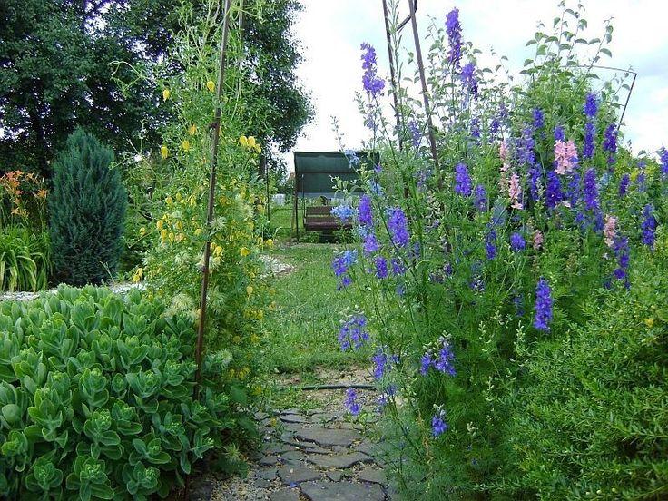 pohľad do záhrady