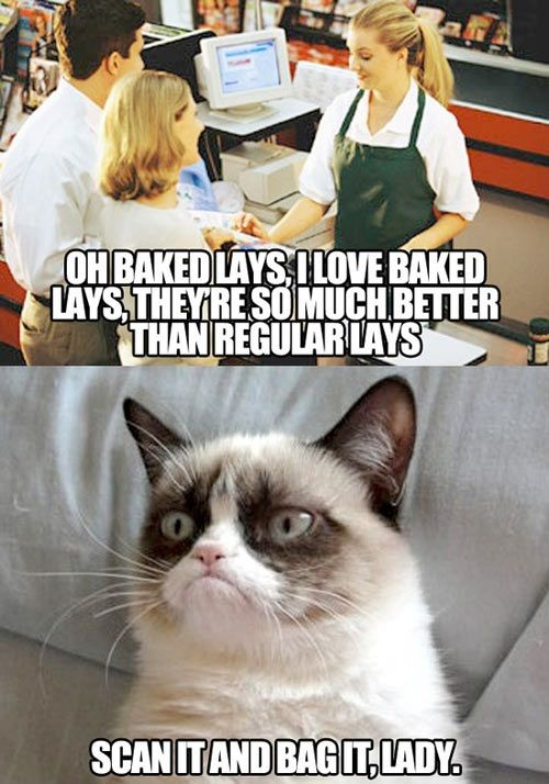 17 best images about grumpy cat        tard on pinterest
