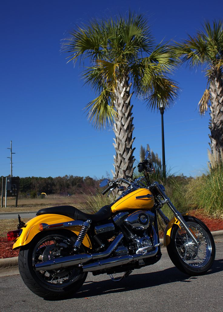 40 best pre loved bikes images on pinterest bike harley davidson 2013 harley davidson fxdc in chrome yellow she has low 1157 miles and is fandeluxe Images
