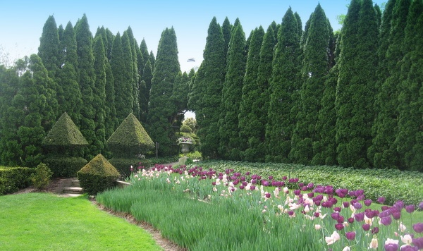 Ladew Gardens in Monkton, MD.