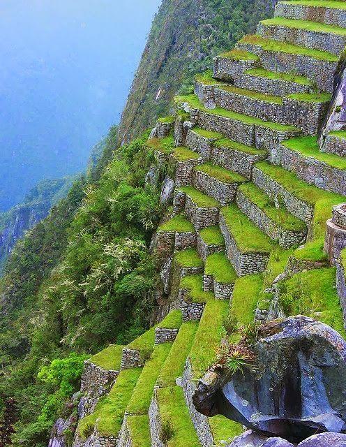 Stone Terrace At Machu Picchu, Peru.