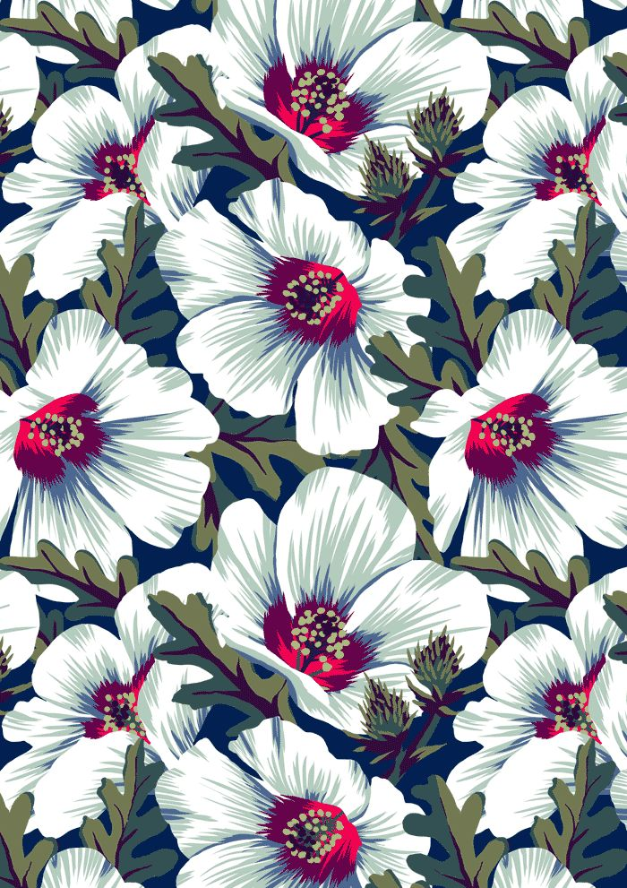 Recently... The Queen of the Closet Wallpapers spring