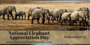 National Elephant Appreciation Day - September 22
