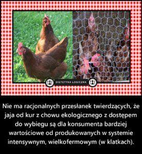 Nie ma racjonalnych przesłanek twierdzących, że jaja od kur z chowu ekologicznego są dla konsumenta bardziej wartościowe od produkowanych w systemie intensywnym