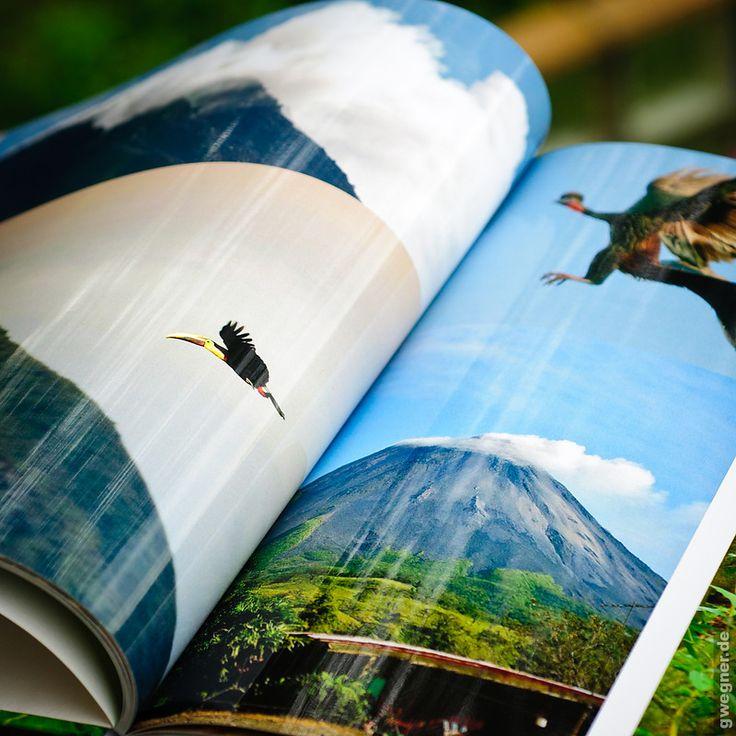 Fotobücher sind toll! Musste man früher Alben aufwändig bekleben und erhielt nach dem ganzen Aufwand dann ein – zumindest von außen – eher wenig individuelles Ergebnis, kann man heute mit verhältnismäßig wenig Aufwand richtige, gebundene Bücher in Hochglanz erstellen. Fotobücher haben auch den riesigen Vorteil, dass man von Ihnen ohne Mehraufwand zusätzliche Exemplare drucken lassen …