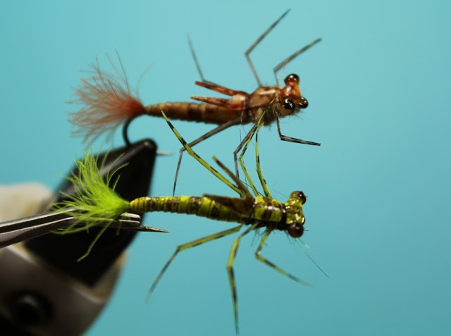 17 best images about damsel dragon and helgrammite for Fly fishing nymphs