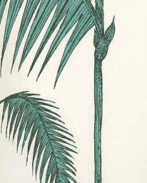Tapet Palm Leaves 03 från Cole & Son