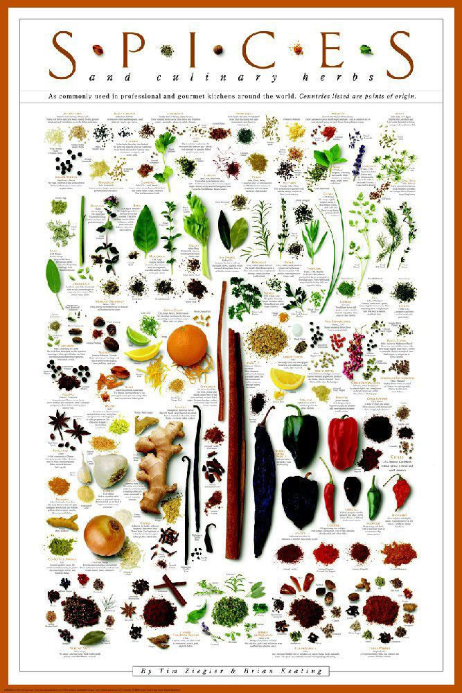 Spices and Culinary Herbs Poster