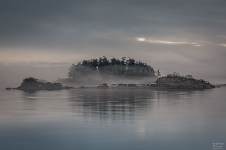 In The Mist by Pius Sullivan on 500px