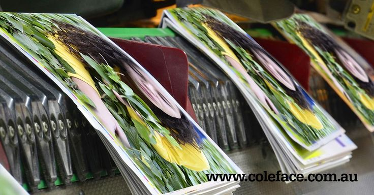 Make sure your Spine Doesn't Crack with these Four Paper Production Tips from #John'sPrintTipoftheMonth http://coleface.com.au/?p=453 @ColefacePrint