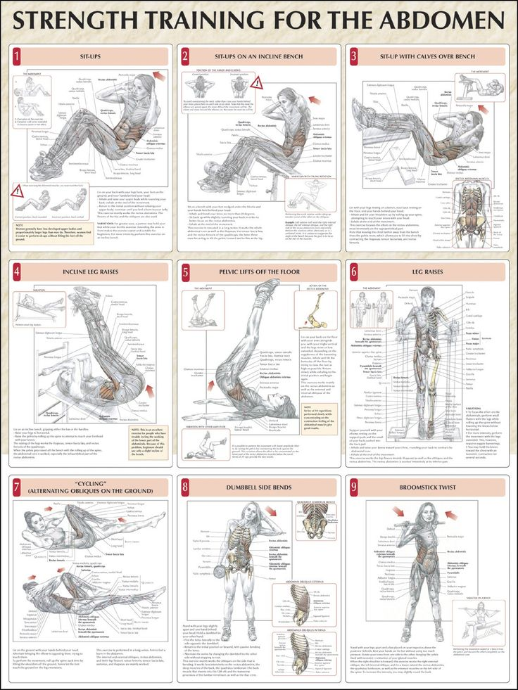 Strength Training For The Abdomen Chart, Don't forget to plank!