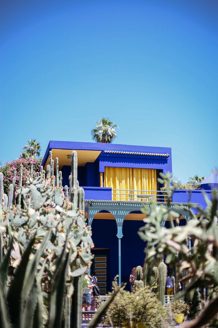 The Majorelle Garden or also known as the YSL garden. Definitely worth a visit if you head to Morocco.