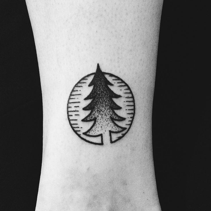 17 best ideas about evergreen tattoo on pinterest tree for Evergreen tree tattoo