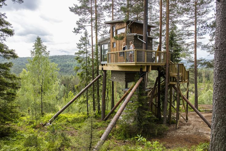 Stay in a cabin in a treehouse. You will love it. Book at http://trehyttene.no/ Photo: Adam Read©Visit Southern Norway