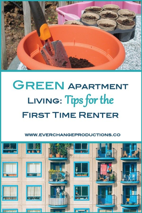 Green Apartment Living Sustainable